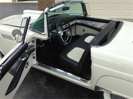 1956 Ford Thunderbird (CC-1357638) for sale in Cadillac, Michigan