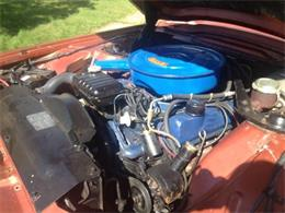 1966 Ford Thunderbird (CC-1357642) for sale in Cadillac, Michigan