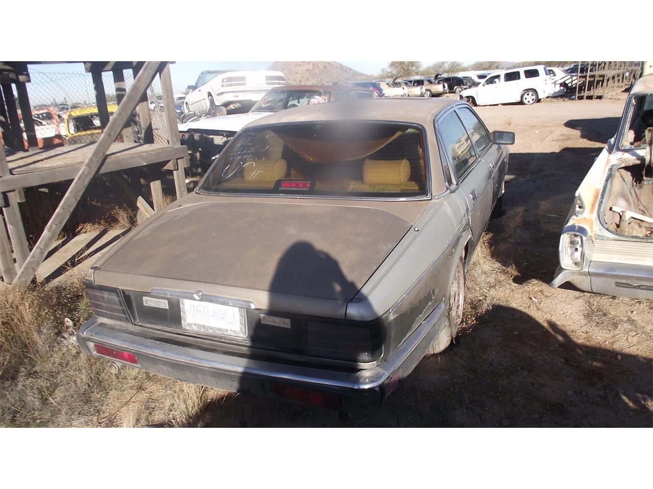 1989 Jaguar XJ6 (CC-1350782) for sale in Phoenix, Arizona
