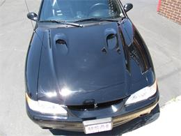 1997 Ford Mustang SVT Cobra (CC-1357849) for sale in Sterling, Illinois