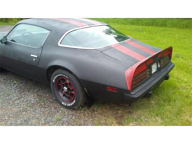 1975 Pontiac Firebird (CC-1357941) for sale in Cadillac, Michigan