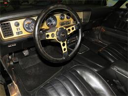 1976 Pontiac Firebird Trans Am SE (CC-1358178) for sale in Apopka, Florida