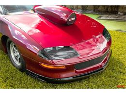 1995 Chevrolet Camaro (CC-1358195) for sale in Fort Lauderdale, Florida