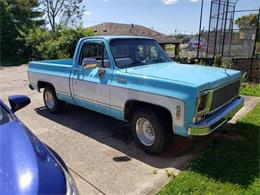1979 Chevrolet Pickup (CC-1358303) for sale in Cadillac, Michigan