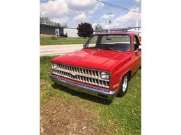 1981 Chevrolet C10 (CC-1358548) for sale in Cadillac, Michigan