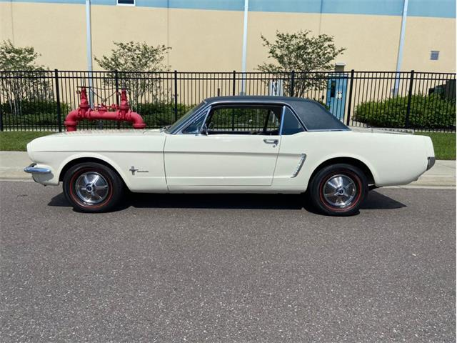 1965 Ford Mustang (CC-1358641) for sale in Clearwater, Florida