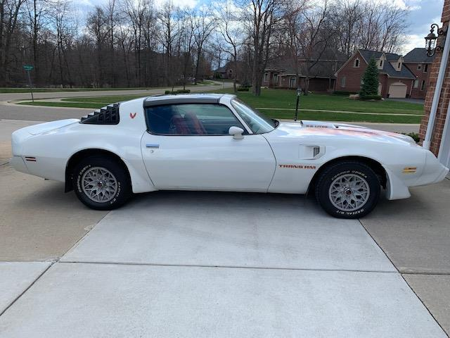 1979 Pontiac Firebird Trans Am (CC-1358944) for sale in WALLED LAKE, Michigan