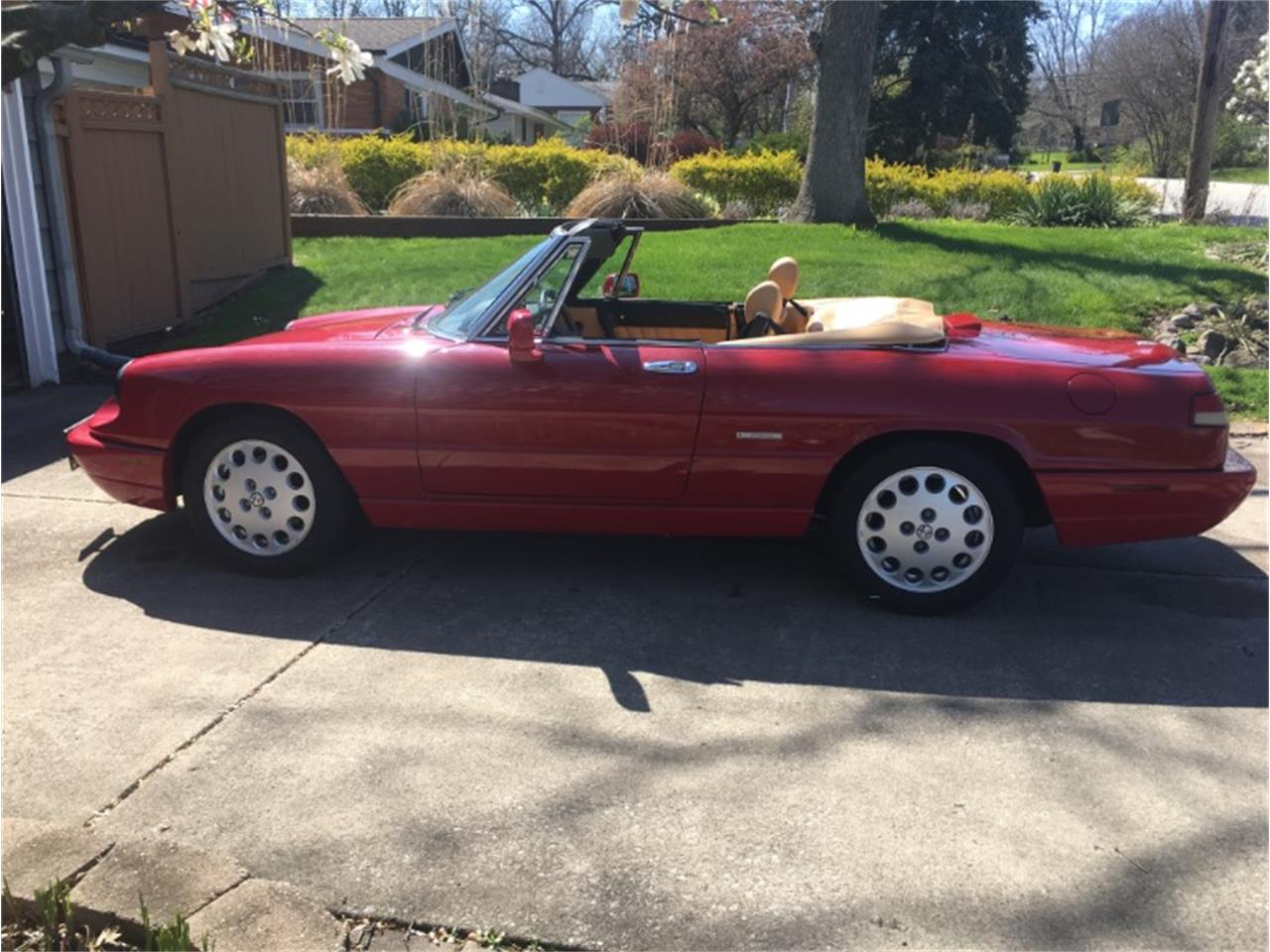 1991 Alfa Romeo Spider (CC-1358967) for sale in Mundelein, Illinois