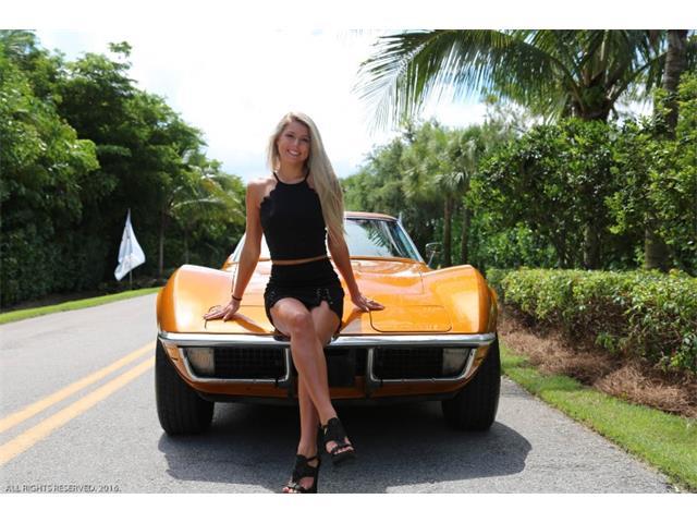 1971 Chevrolet Corvette (CC-1359016) for sale in Fort Myers, Florida
