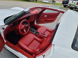 1979 Chevrolet Corvette (CC-1359041) for sale in Avondale, Pennsylvania