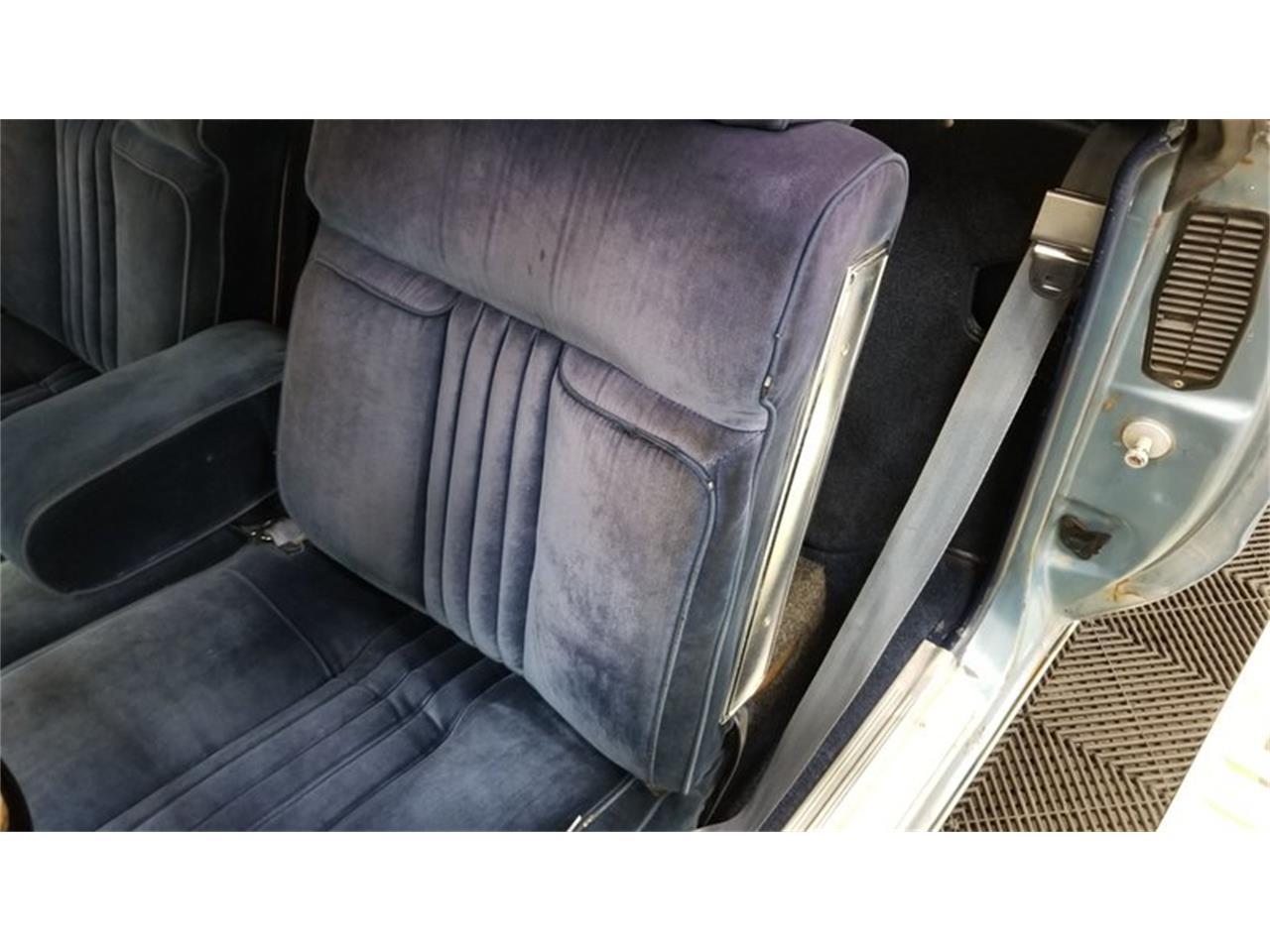 1981 Chevrolet El Camino (CC-1359785) for sale in Mankato, Minnesota