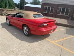 1997 Chevrolet Camaro (CC-1361065) for sale in Annandale, Minnesota