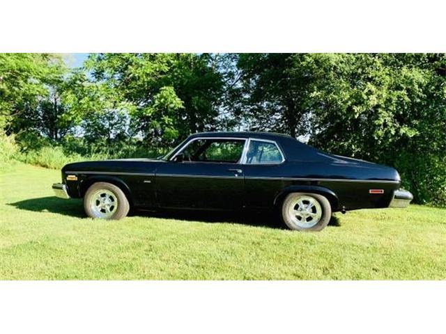 1974 Chevrolet Nova (CC-1361573) for sale in Cadillac, Michigan