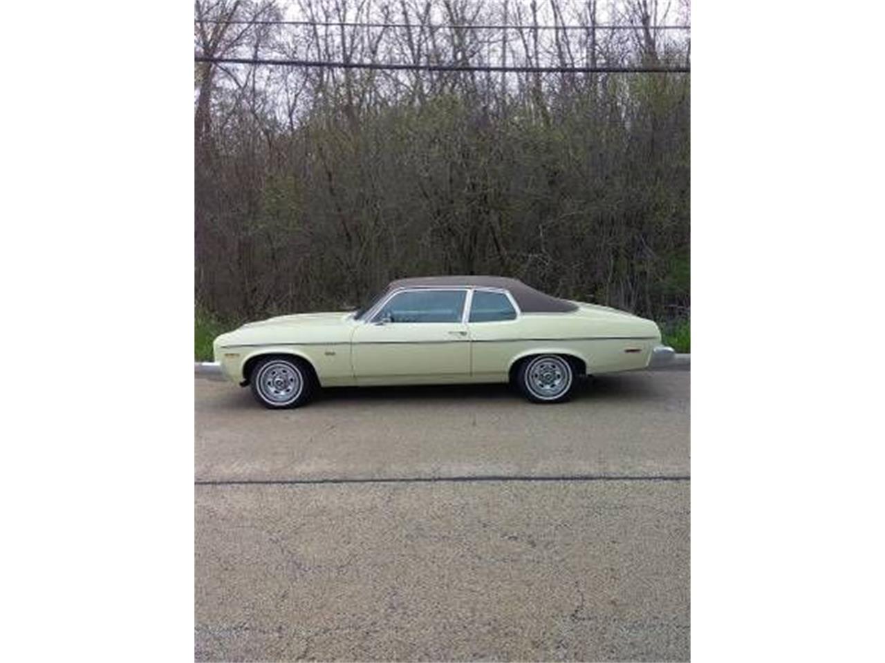 1974 Chevrolet Nova (CC-1361585) for sale in Cadillac, Michigan