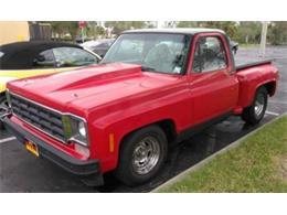 1976 Chevrolet C10 (CC-1361613) for sale in Cadillac, Michigan