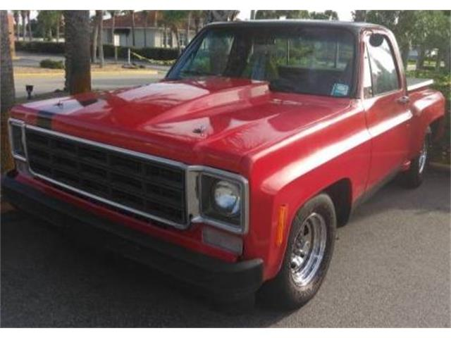 1976 Chevrolet C10 (CC-1361613) for sale in Cadillac, Michigan