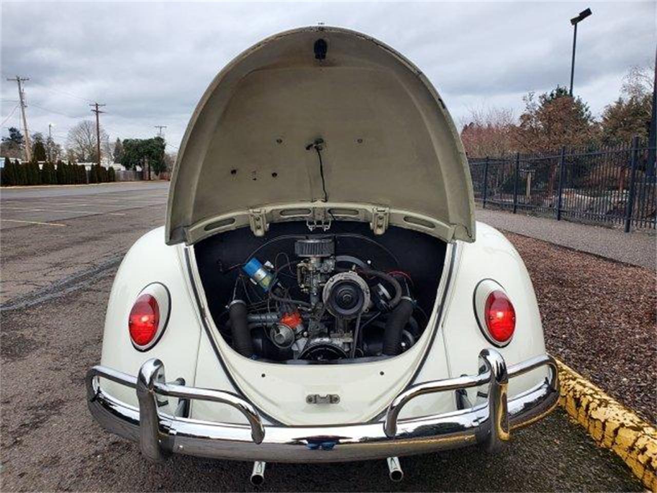 1966 Volkswagen Beetle (CC-1361720) for sale in Eugene, Oregon