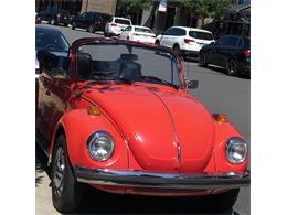 1975 Volkswagen Convertible (CC-1362535) for sale in Charlotte, North Carolina