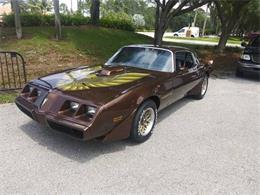 1978 Pontiac Firebird Trans Am (CC-1362912) for sale in Cadillac, Michigan