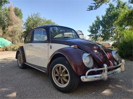 1965 Volkswagen Beetle (CC-1363063) for sale in Bloomfield, New Mexico