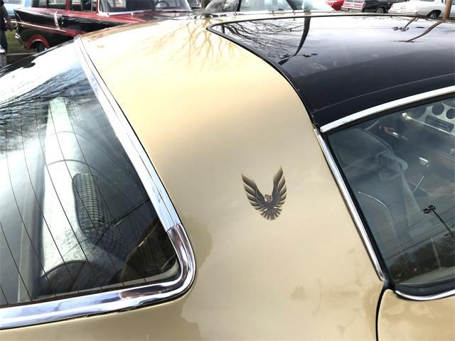 1979 Pontiac Firebird Trans Am (CC-1363590) for sale in Stratford, New Jersey