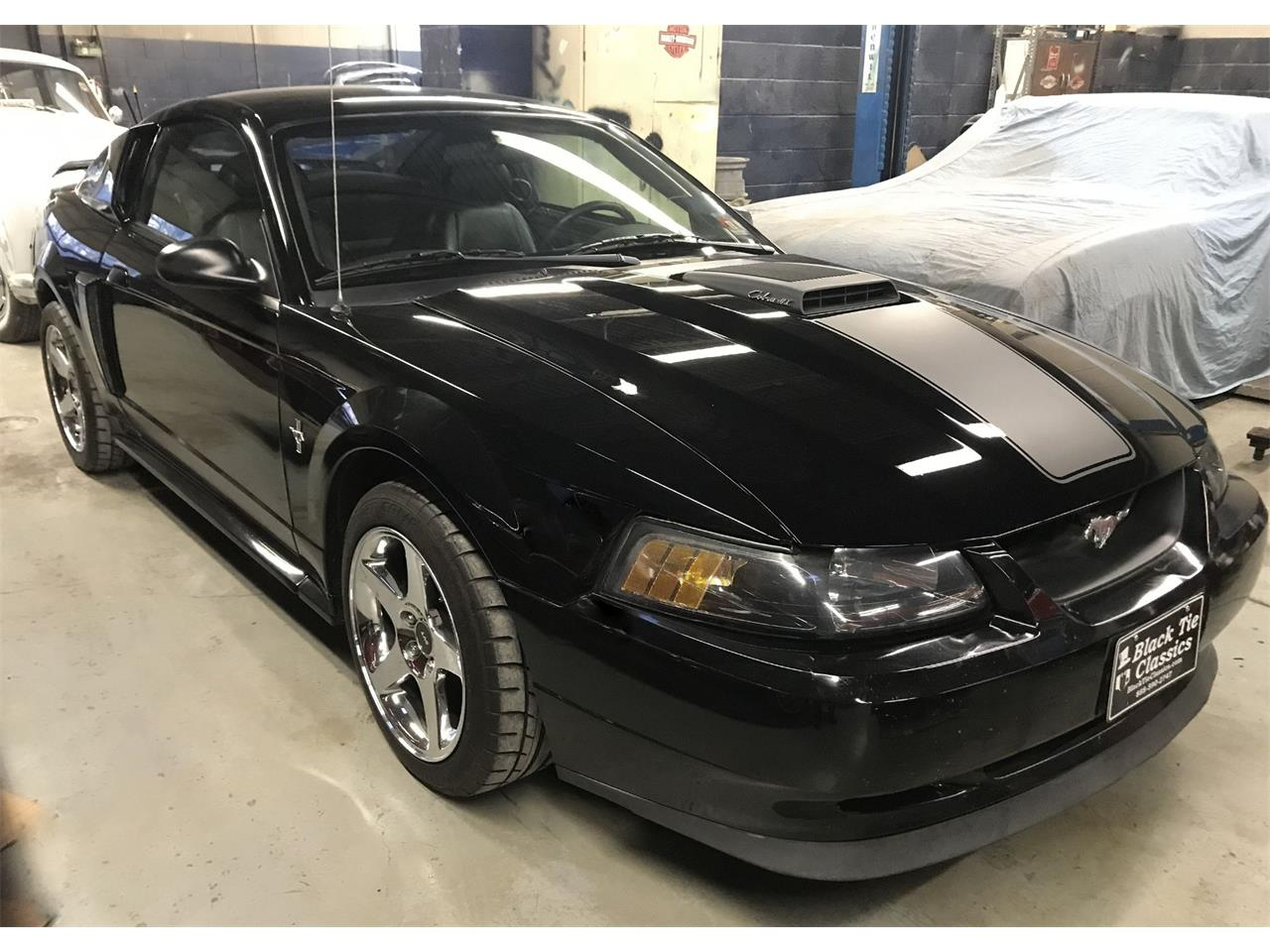 2003 Ford Mustang Cobra (CC-1363593) for sale in Stratford, New Jersey