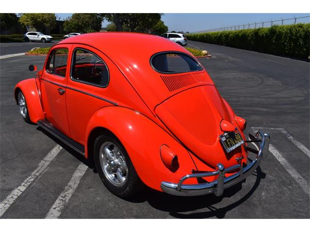 1957 Volkswagen Beetle (CC-1364644) for sale in Costa Mesa, California