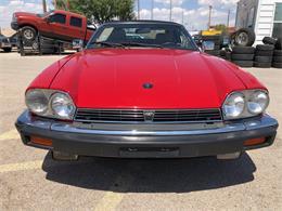 1990 Jaguar XJS (CC-1364916) for sale in El Paso, Texas