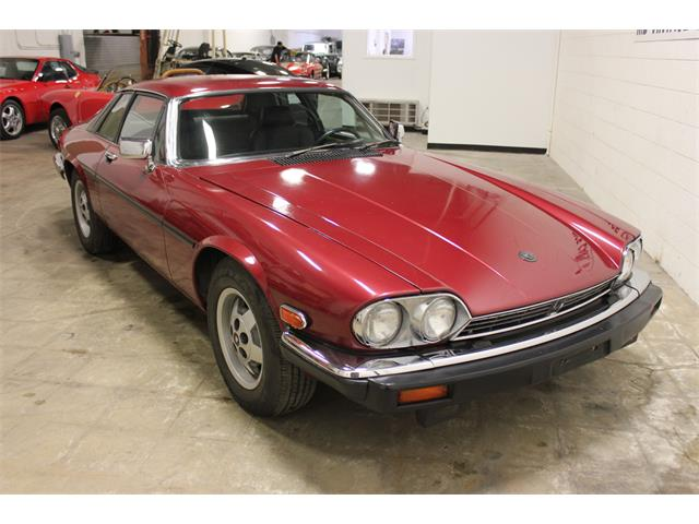 1984 Jaguar XJS (CC-1364917) for sale in Cleveland, Ohio