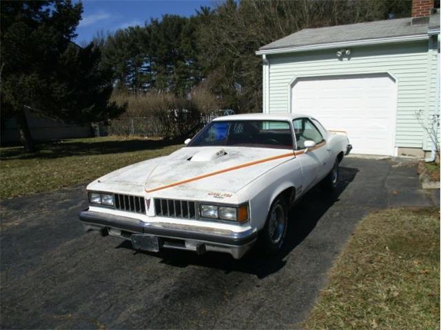 1977 Pontiac LeMans (CC-1365557) for sale in Cadillac, Michigan