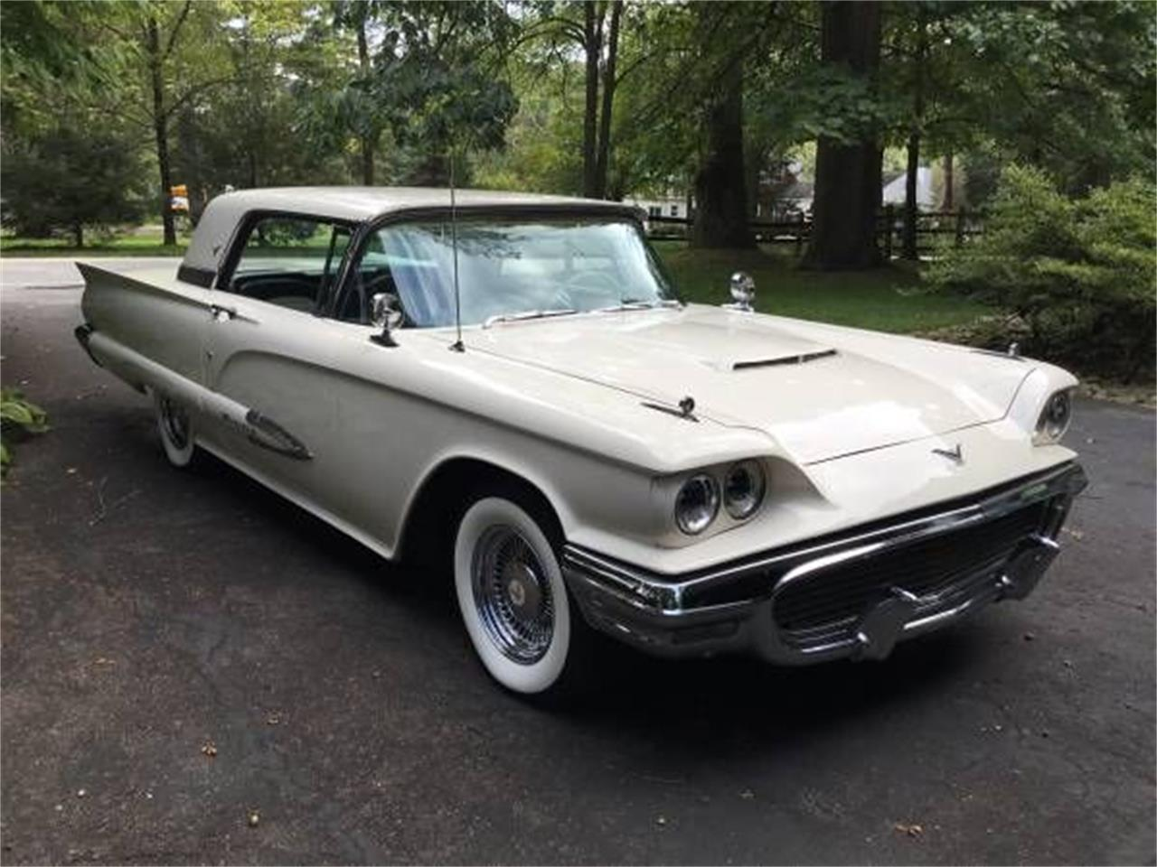 1959 Ford Thunderbird (CC-1365601) for sale in Cadillac, Michigan