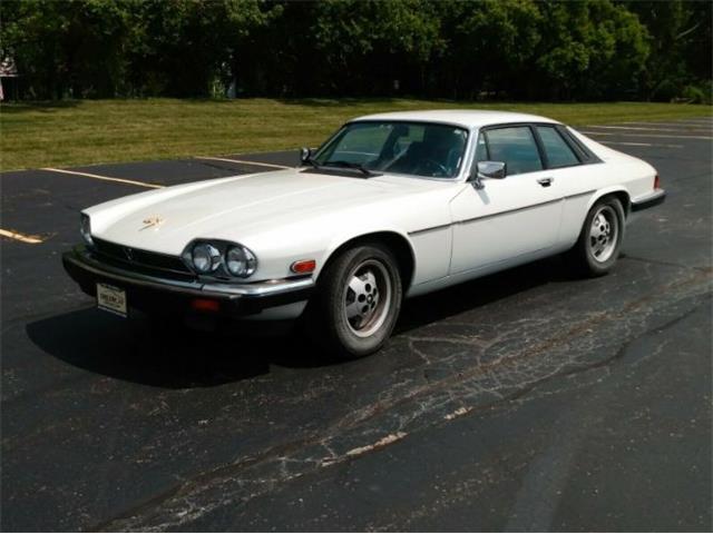 1985 Jaguar XJS (CC-1365813) for sale in Cadillac, Michigan