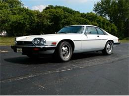1985 Jaguar XJS (CC-1365813) for sale in Cadillac, Michigan