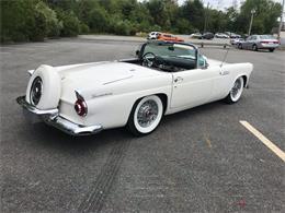 1956 Ford Thunderbird (CC-1365877) for sale in Westford, Massachusetts