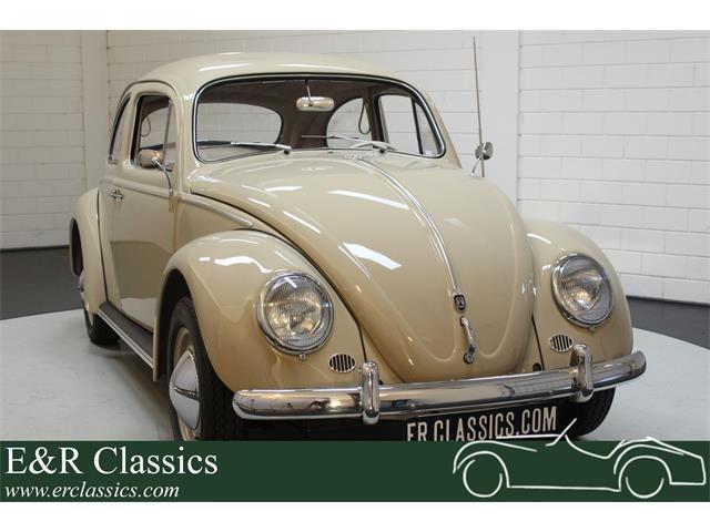 1959 Volkswagen Beetle (CC-1365902) for sale in Waalwijk, Noord-Brabant
