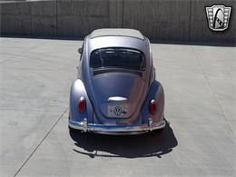1967 Volkswagen Beetle (CC-1365954) for sale in O'Fallon, Illinois