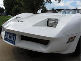 1980 Chevrolet Corvette (CC-1366089) for sale in Troy, Michigan