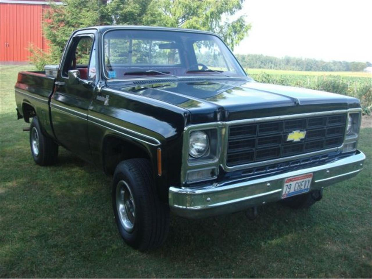 1979 Chevrolet K-10 (CC-1366284) for sale in Cadillac, Michigan