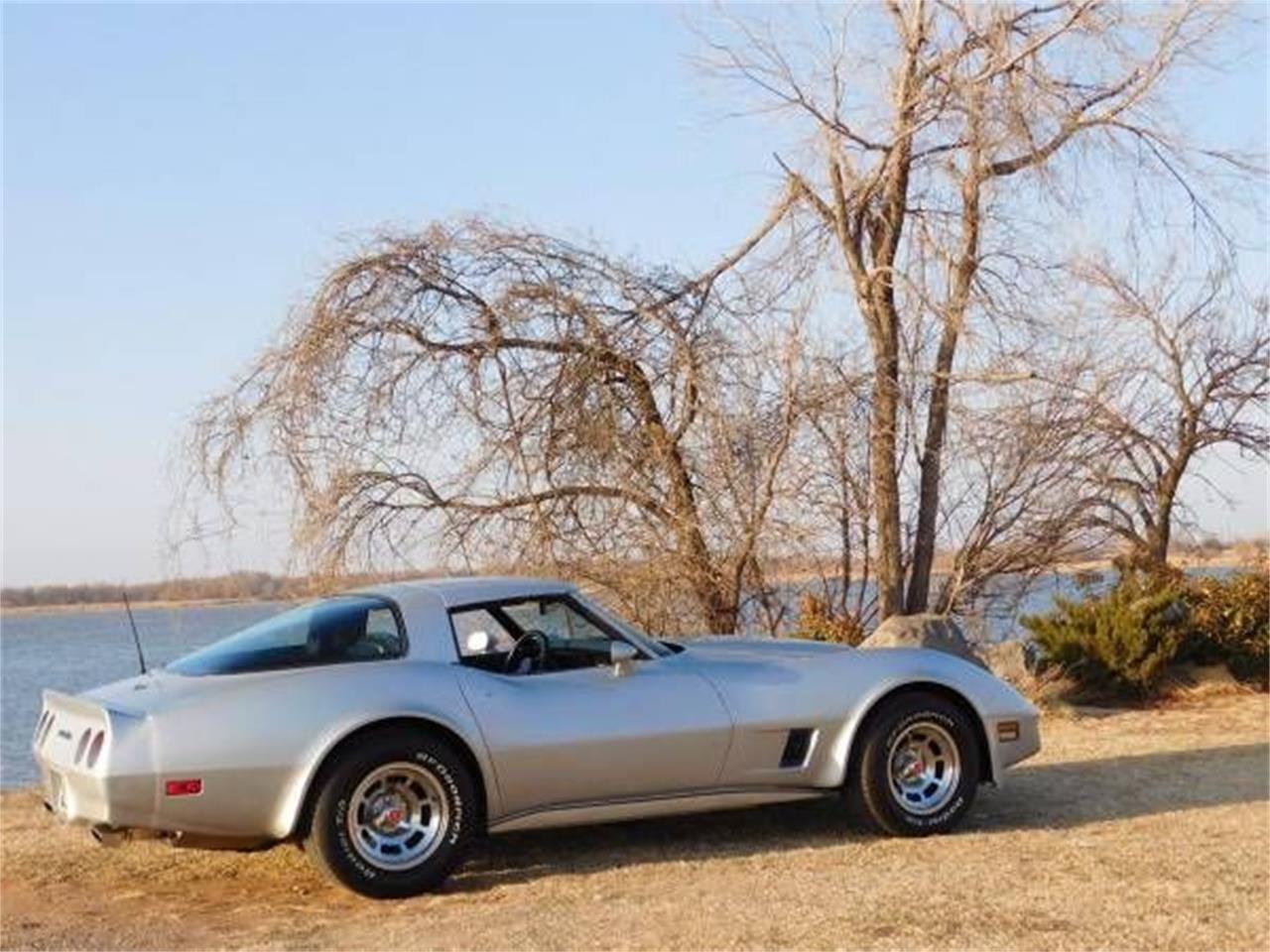 1981 Chevrolet Corvette (CC-1360702) for sale in Cadillac, Michigan