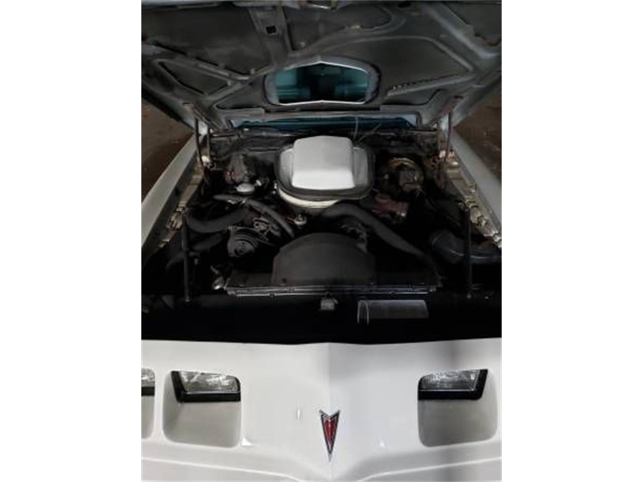 1979 Pontiac Firebird Trans Am (CC-1360739) for sale in Cadillac, Michigan