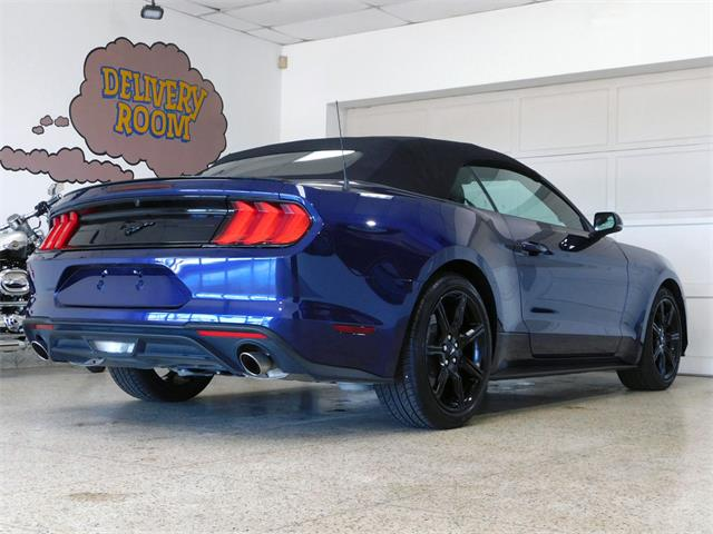 2019 Ford Mustang (CC-1367442) for sale in Hamburg, New York