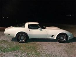 1980 Chevrolet Corvette (CC-1360752) for sale in Cadillac, Michigan