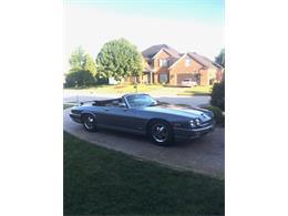 1988 Jaguar XJS (CC-1367537) for sale in Owensboro , Kentucky