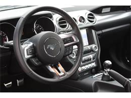 2017 Ford Mustang (CC-1360769) for sale in Clifton Park, New York