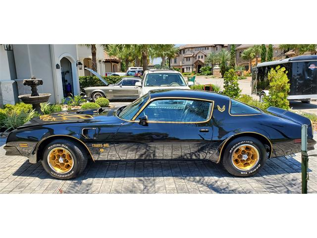 1976 Pontiac Firebird Trans Am SE (CC-1367871) for sale in Conroe, Texas