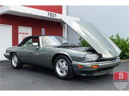 1995 Jaguar XJS (CC-1368102) for sale in Miami, Florida