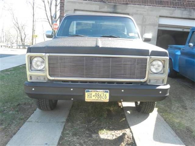 1980 Chevrolet C10 (CC-1368416) for sale in Cadillac, Michigan
