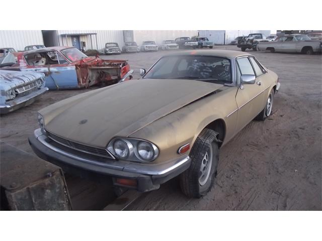 1986 Jaguar XJS (CC-1360856) for sale in Casa Grande, Arizona