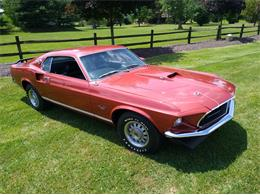 1969 Ford Mustang (CC-1360866) for sale in Cleveland , Oh