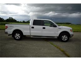 2014 Ford F150 (CC-1360923) for sale in Cicero, Indiana
